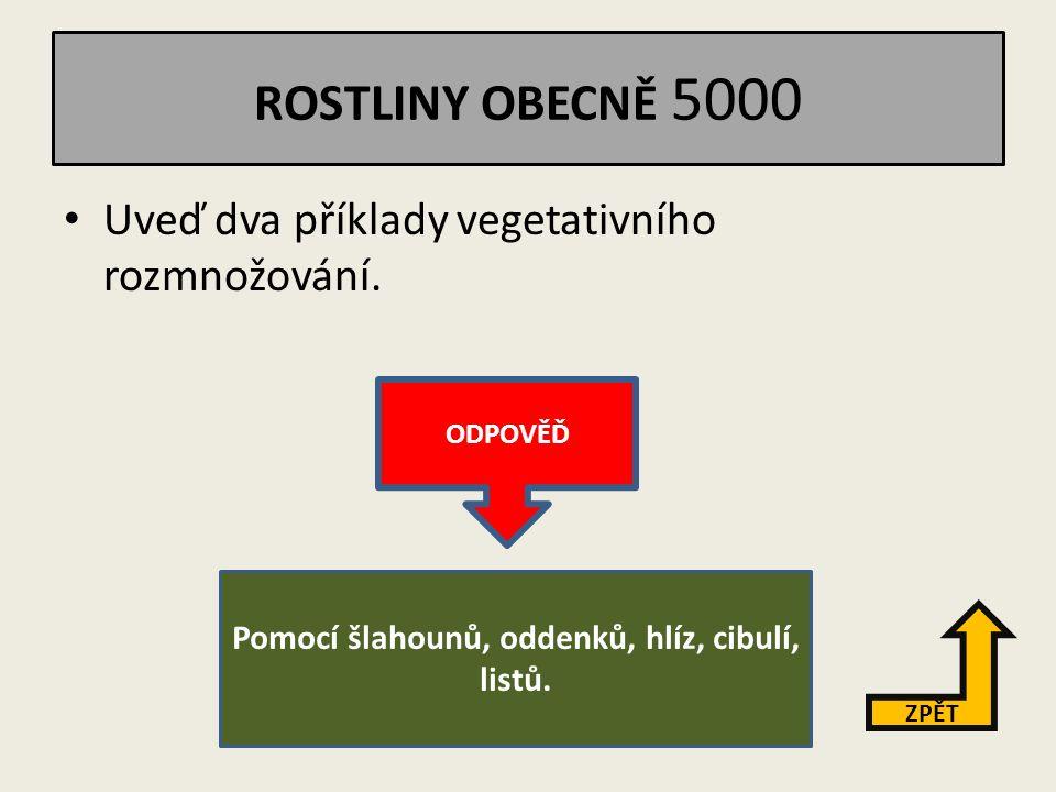 ROSTLINY OBECNĚ 4000 Vysvětli hlavní rozdíl mezi nahosemennou a krytosemennou rostlinou.