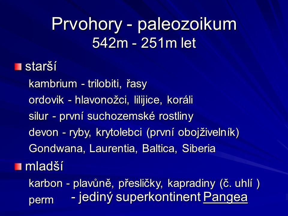 Prvohory - paleozoikum 542m - 251m let starší kambrium - trilobiti, řasy ordovik - hlavonožci, lilijice, koráli silur - první suchozemské rostliny devon - ryby, krytolebci (první obojživelník) Gondwana, Laurentia, Baltica, Siberia mladší karbon - plavůně, přesličky, kapradiny (č.