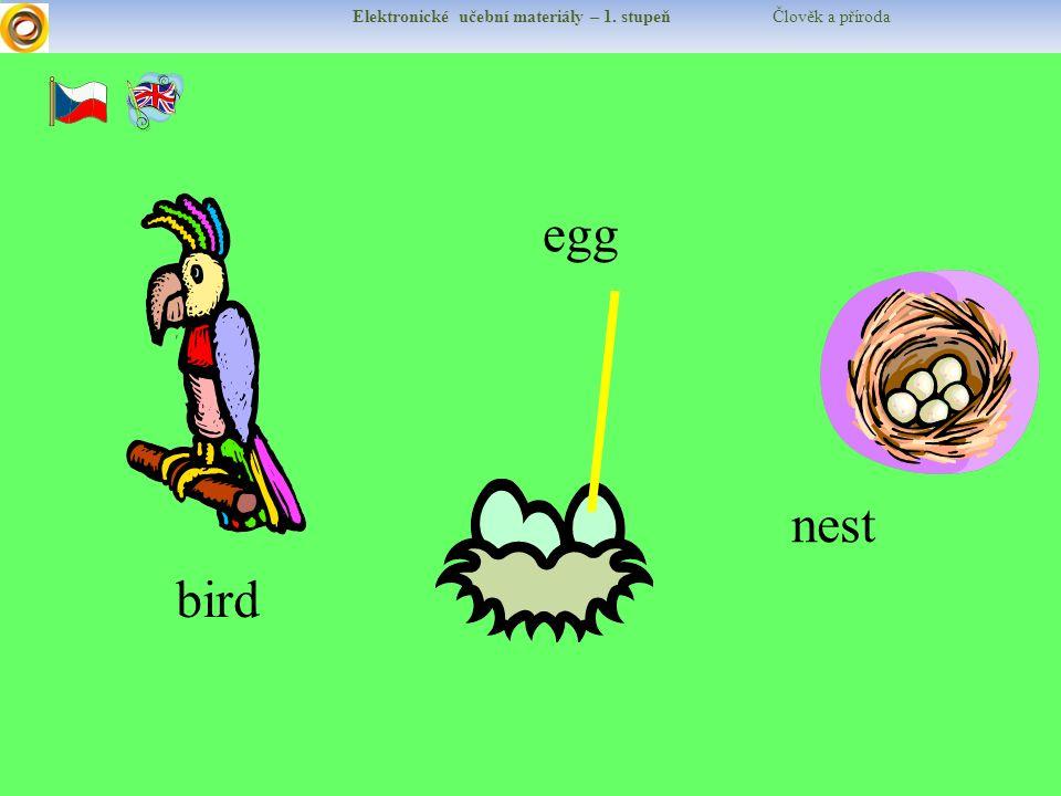 Elektronické učební materiály – 1. stupeň Člověk a příroda bird egg nest