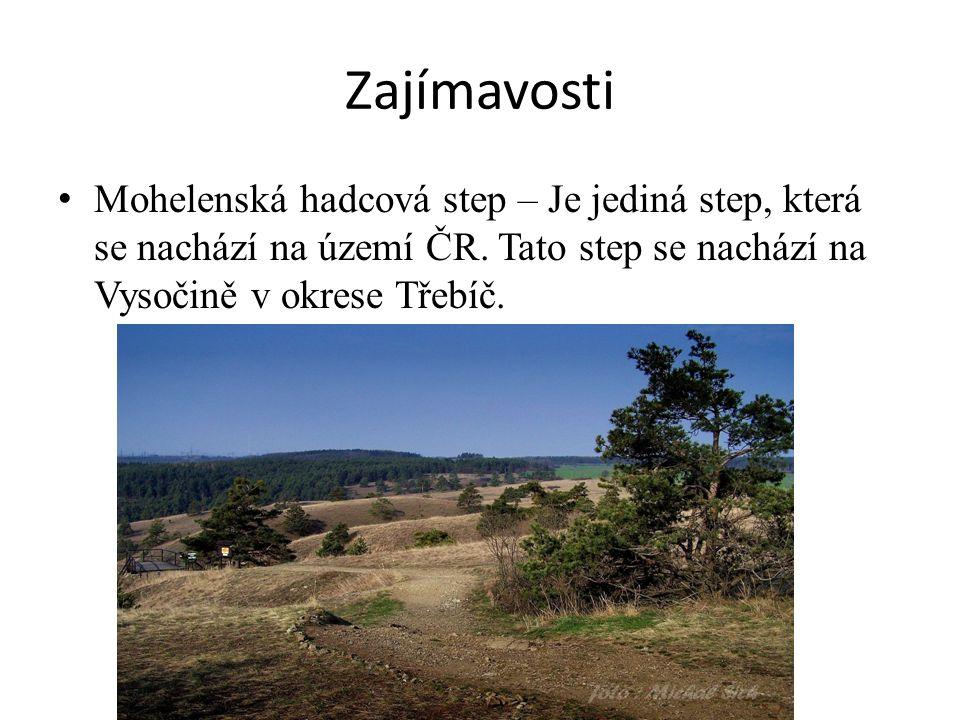 Zajímavosti Mohelenská hadcová step – Je jediná step, která se nachází na území ČR. Tato step se nachází na Vysočině v okrese Třebíč.