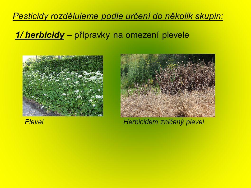 Pesticidy rozdělujeme podle určení do několik skupin: 1/ herbicidy – přípravky na omezení plevele Herbicidem zničený plevelPlevel
