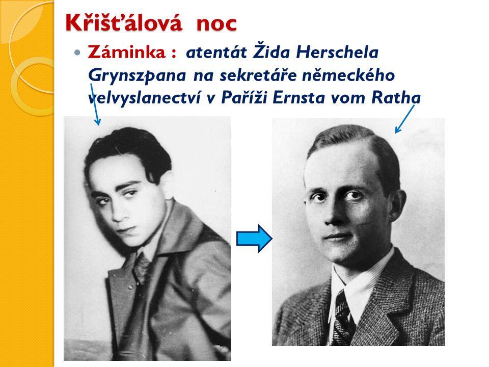 Křišťálová noc Záminka : atentát Žida Herschela Grynszpana na sekretáře německého velvyslanectví v Paříži Ernsta vom Ratha