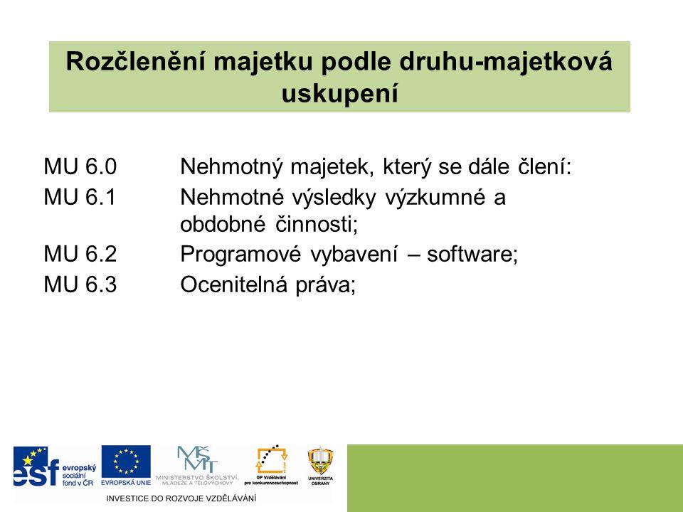 MU 6.0 Nehmotný majetek, který se dále člení: MU 6.1 Nehmotné výsledky výzkumné a obdobné činnosti; MU 6.2 Programové vybavení – software; MU 6.3 Ocenitelná práva; Rozčlenění majetku podle druhu-majetková uskupení