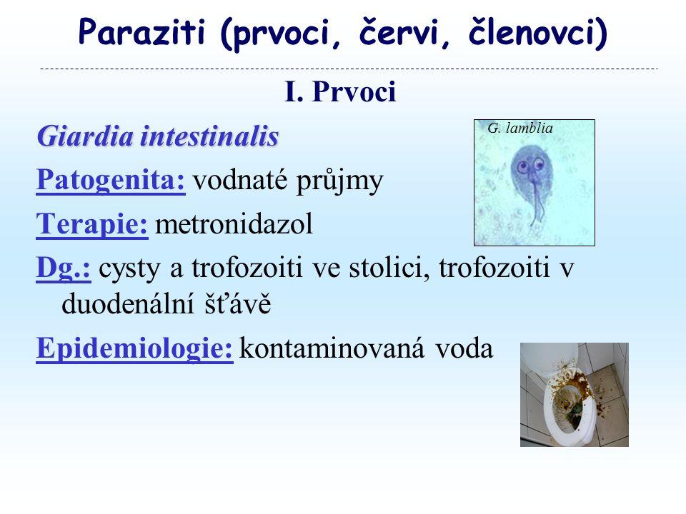Paraziti (prvoci, červi, členovci) I.
