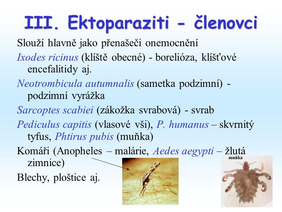 III. Ektoparaziti - členovci Slouží hlavně jako přenašeči onemocnění Ixodes ricinus (klíště obecné) - borelióza, klíšťové encefalitidy aj. Neotrombicu