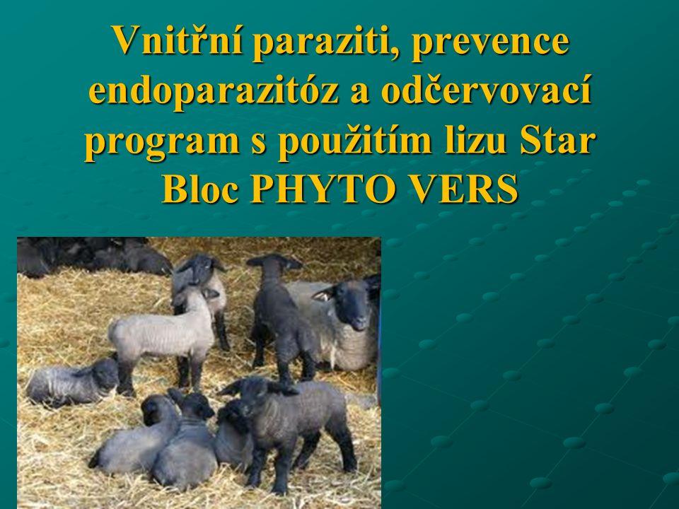 Vnitřní paraziti, prevence endoparazitóz a odčervovací program s použitím lizu Star Bloc PHYTO VERS