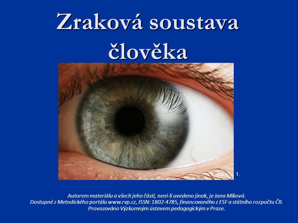 Smyslové ústrojí - zrak Orgán zraku = oko Orgán zraku = oko Registruje viditelné světlo (elektromagnetické záření) Registruje viditelné světlo (elektromagnetické záření) Je zrak naším hlavním smyslem.