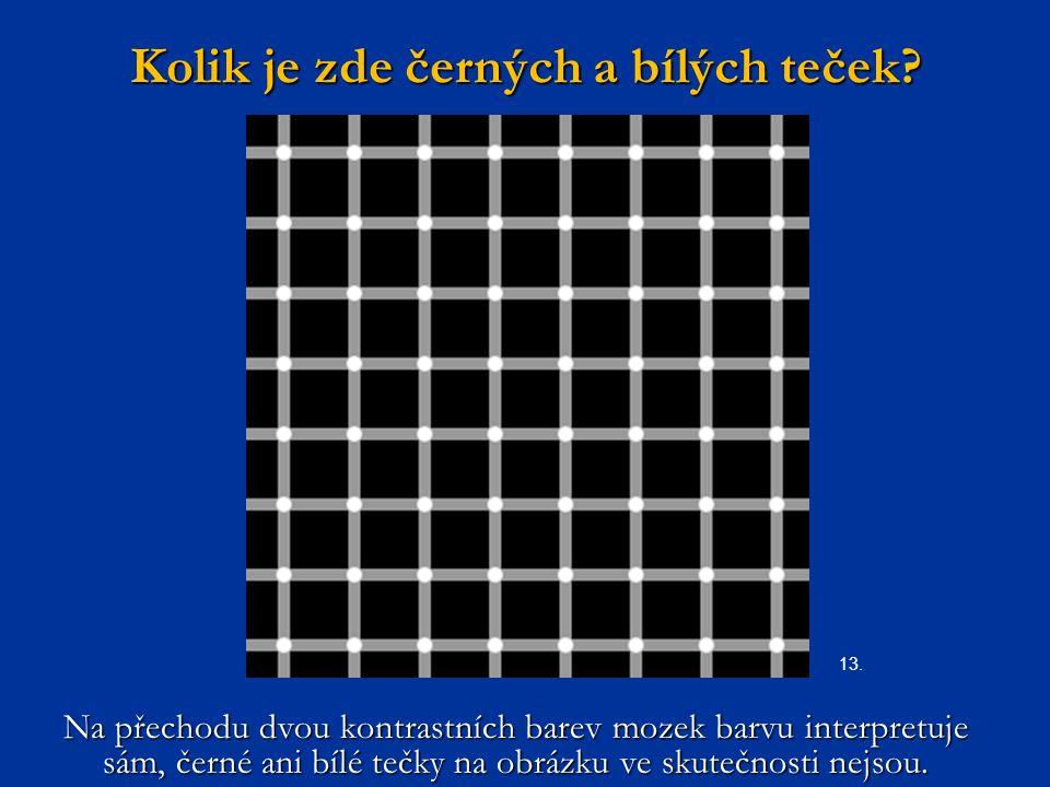 Kolik je zde černých a bílých teček? Na přechodu dvou kontrastních barev mozek barvu interpretuje sám, černé ani bílé tečky na obrázku ve skutečnosti