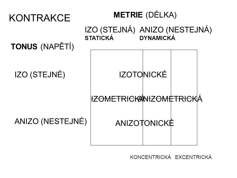 TONUS (NAPĚTÍ) METRIE (DÉLKA) IZO (STEJNÉ) ANIZO (NESTEJNÉ) ANIZO (NESTEJNÁ) DYNAMICKÁ IZO (STEJNÁ) STATICKÁ KONCENTRICKÁEXCENTRICKÁ IZOTONICKÉ ANIZOTONICKÉ IZOMETRICKÁANIZOMETRICKÁ KONTRAKCE