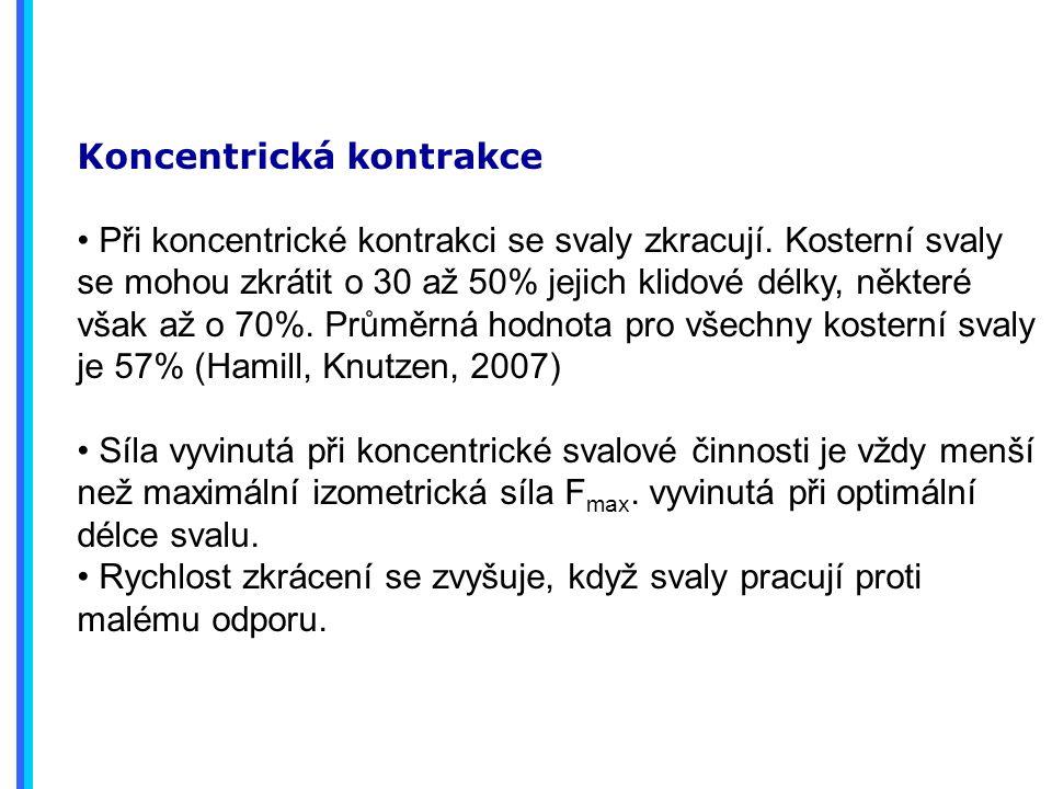 Koncentrická kontrakce Při koncentrické kontrakci se svaly zkracují.