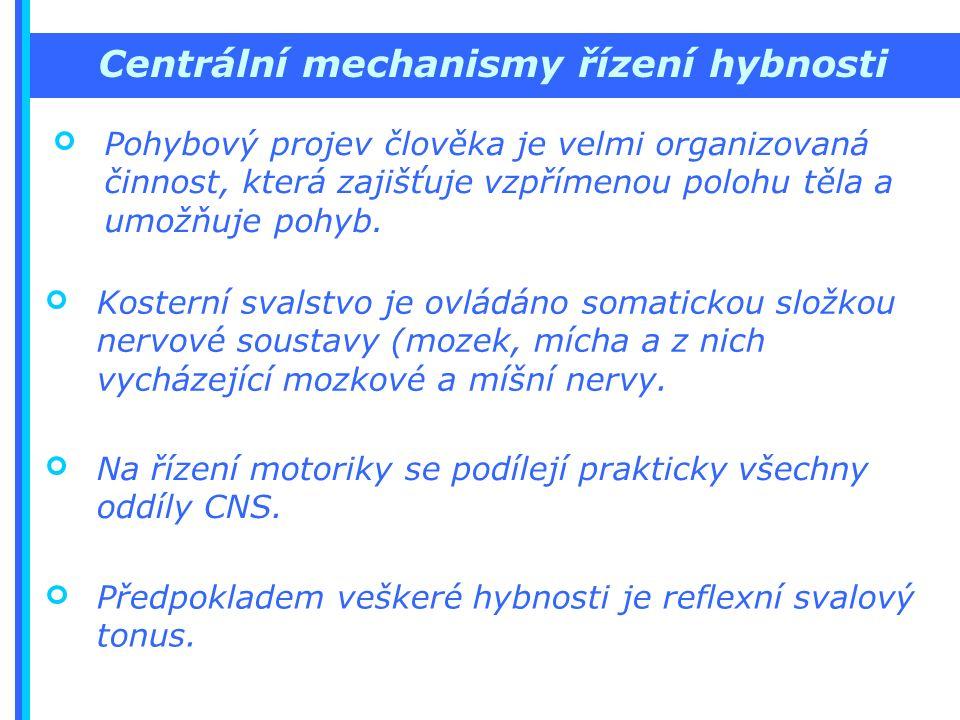 Centrální mechanismy řízení hybnosti Pohybový projev člověka je velmi organizovaná činnost, která zajišťuje vzpřímenou polohu těla a umožňuje pohyb.