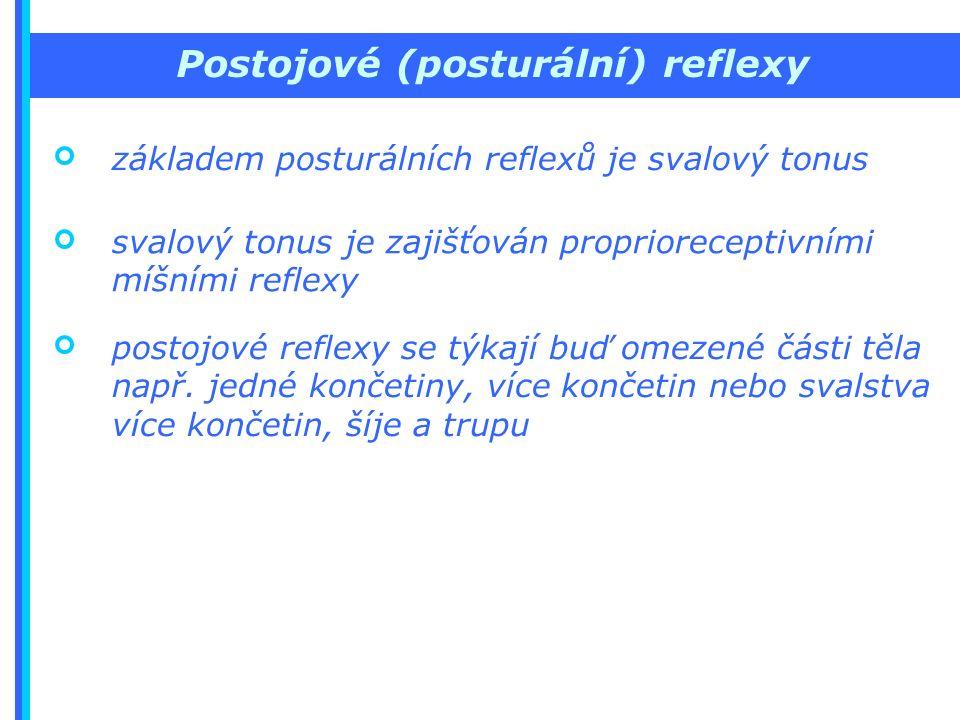 Postojové (posturální) reflexy základem posturálních reflexů je svalový tonus svalový tonus je zajišťován proprioreceptivními míšními reflexy postojové reflexy se týkají buď omezené části těla např.