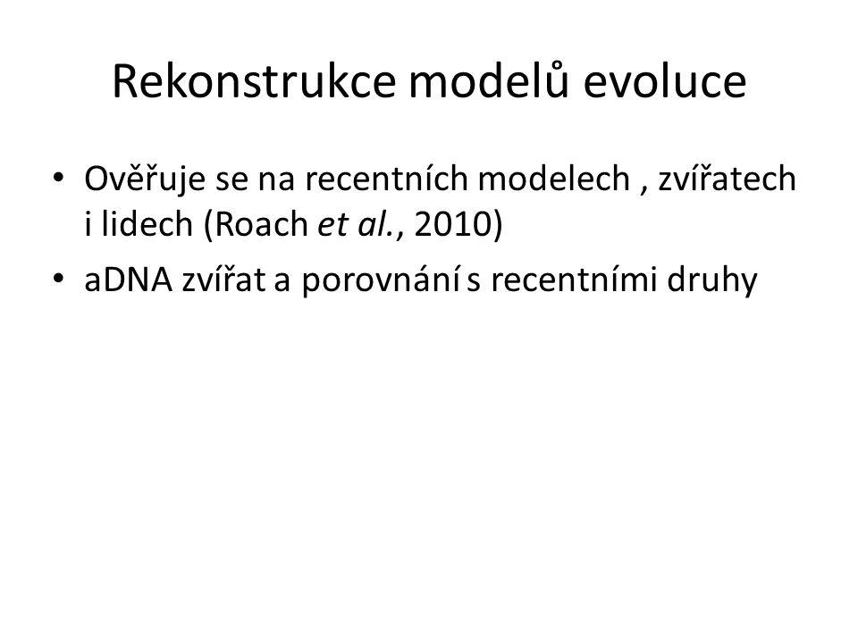Rekonstrukce modelů evoluce Ověřuje se na recentních modelech, zvířatech i lidech (Roach et al., 2010) aDNA zvířat a porovnání s recentními druhy