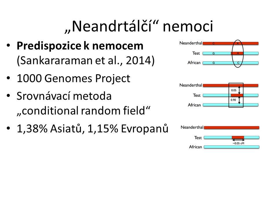 """""""Neandrtálčí nemoci Predispozice k nemocem (Sankararaman et al., 2014) 1000 Genomes Project Srovnávací metoda """"conditional random field 1,38% Asiatů, 1,15% Evropanů"""