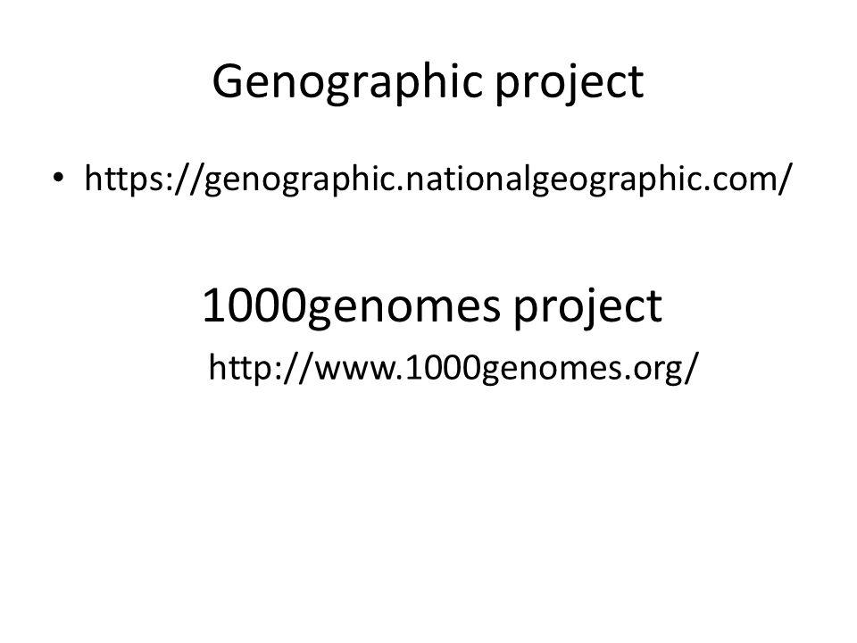 Homo neanderthalensis Z Homo antecessor vyvinul nový druh Homo heidelbergensis, který je považován za předchůdce neandrtálce Poslední nálezy z Gibraltraru 28 000 př.
