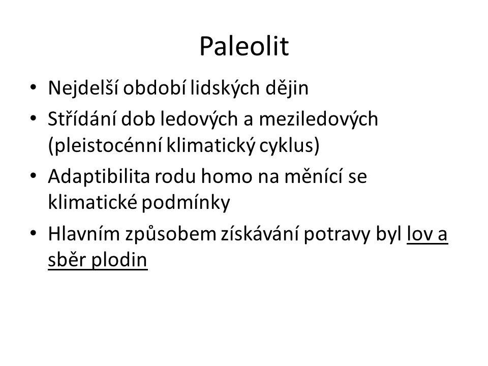 Paleolit Nejstarší paleolit: před 4 - 1 mil.Let Starý paleolit: před 1 mil.
