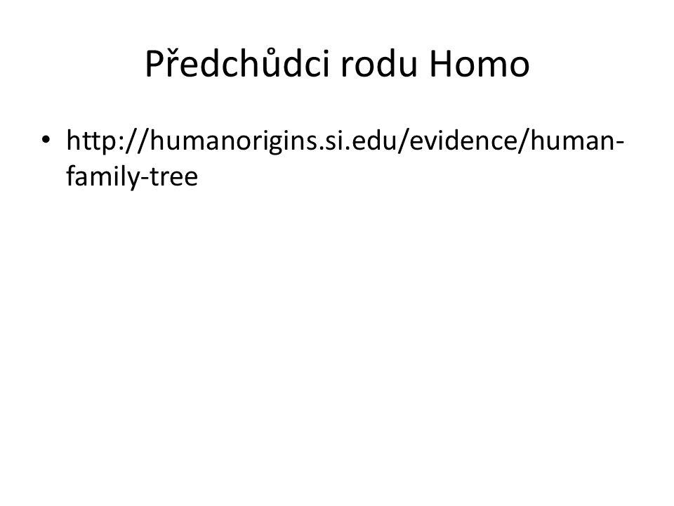 Předchůdci rodu Homo http://humanorigins.si.edu/evidence/human- family-tree