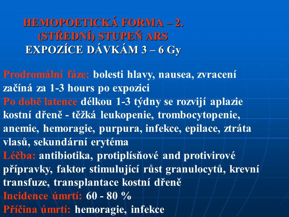 HEMOPOETICKÁ FORMA – 2.