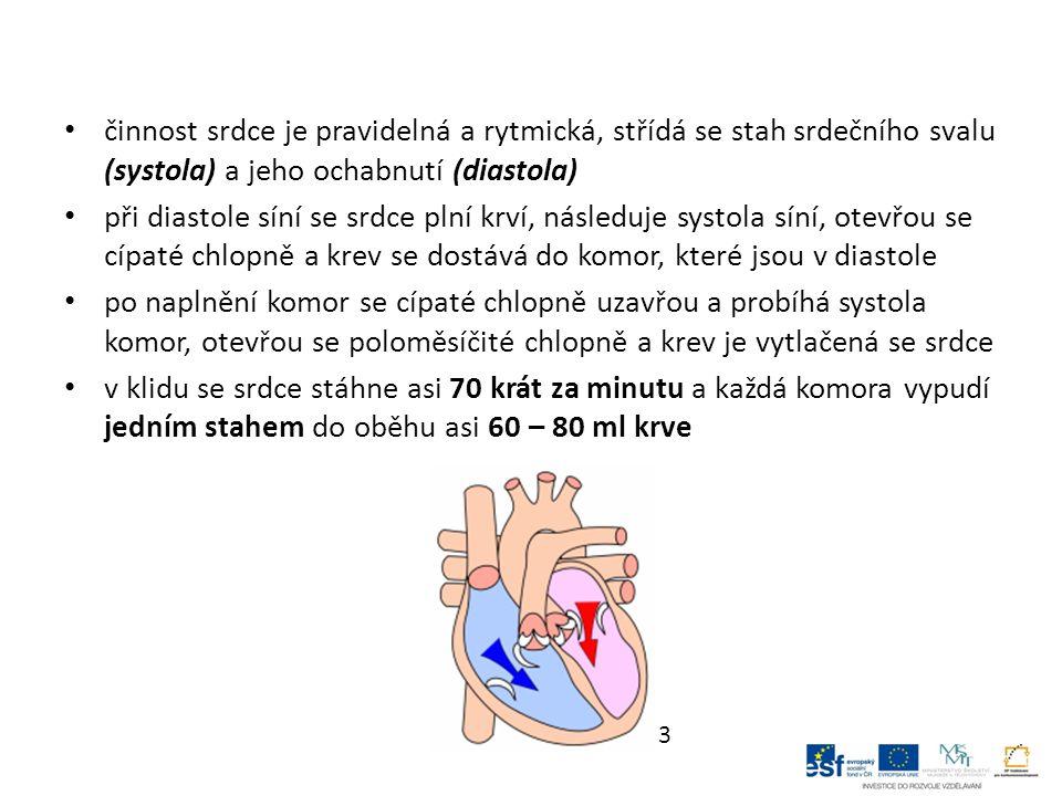 činnost srdce je pravidelná a rytmická, střídá se stah srdečního svalu (systola) a jeho ochabnutí (diastola) při diastole síní se srdce plní krví, následuje systola síní, otevřou se cípaté chlopně a krev se dostává do komor, které jsou v diastole po naplnění komor se cípaté chlopně uzavřou a probíhá systola komor, otevřou se poloměsíčité chlopně a krev je vytlačená se srdce v klidu se srdce stáhne asi 70 krát za minutu a každá komora vypudí jedním stahem do oběhu asi 60 – 80 ml krve 3