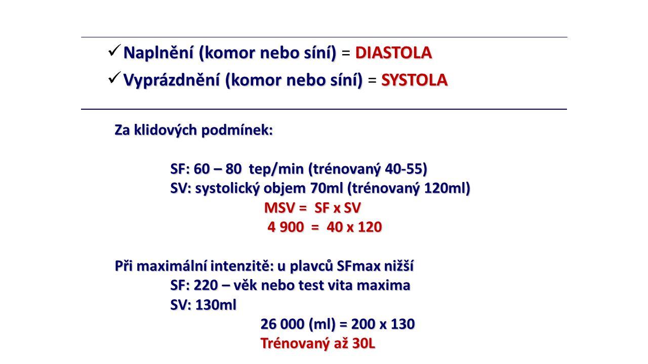 Naplnění (komor nebo síní) síní) = DIASTOLA Vyprázdnění (komor nebo síní) síní) = SYSTOLA Za klidových podmínek: SF: 60 – 80 tep/min (trénovaný 40-55)