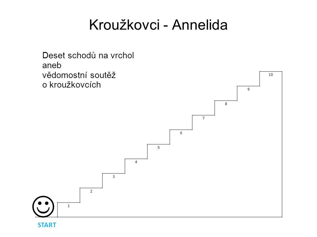 Deset schodů na vrchol aneb vědomostní soutěž o KROUŽKOVCÍCH   Otázka první : Mezi kroužkovce NEPATŘÍ : A) Pijavka lékařskáB) Palolo zelený C) Žížala hnojníD) Škrkavka dětská