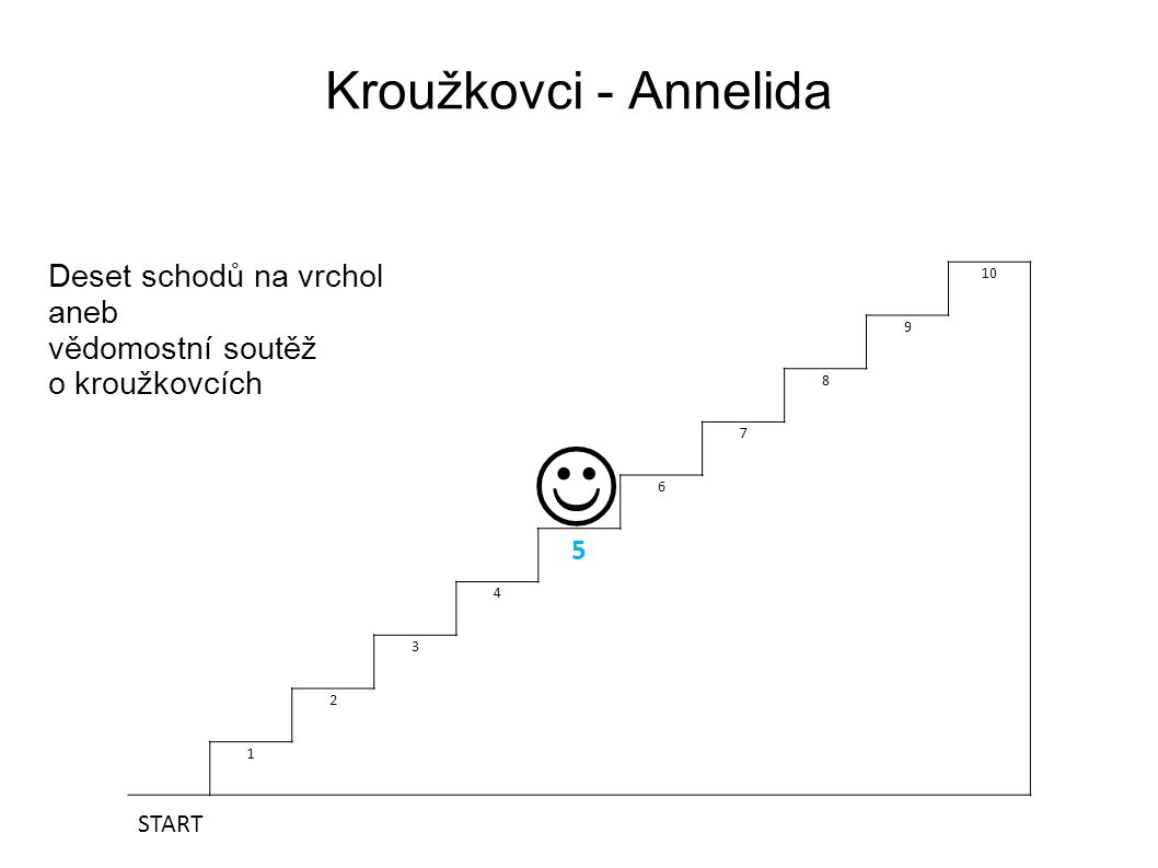 Kroužkovci - Annelida Deset schodů na vrchol aneb vědomostní soutěž o kroužkovcích 10 9 8 7 6 5 4 3 2 1 START