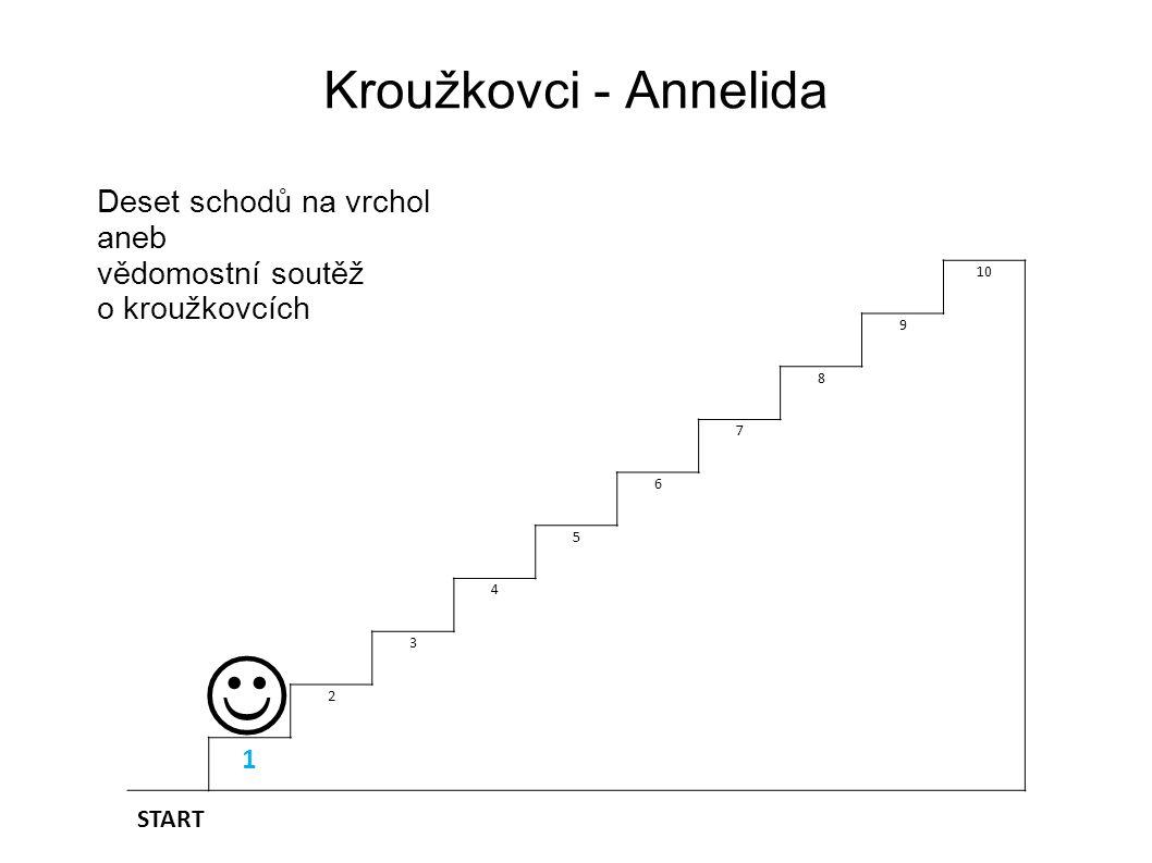 Deset schodů na vrchol aneb vědomostní soutěž o KROUŽKOVCÍCH   Otázka druhá: Žížala obecná (Lumbricus terrestris) dýchá : A) žábramiB) plicním vakem C) celým povrchem tělaD) vzdušnicemi