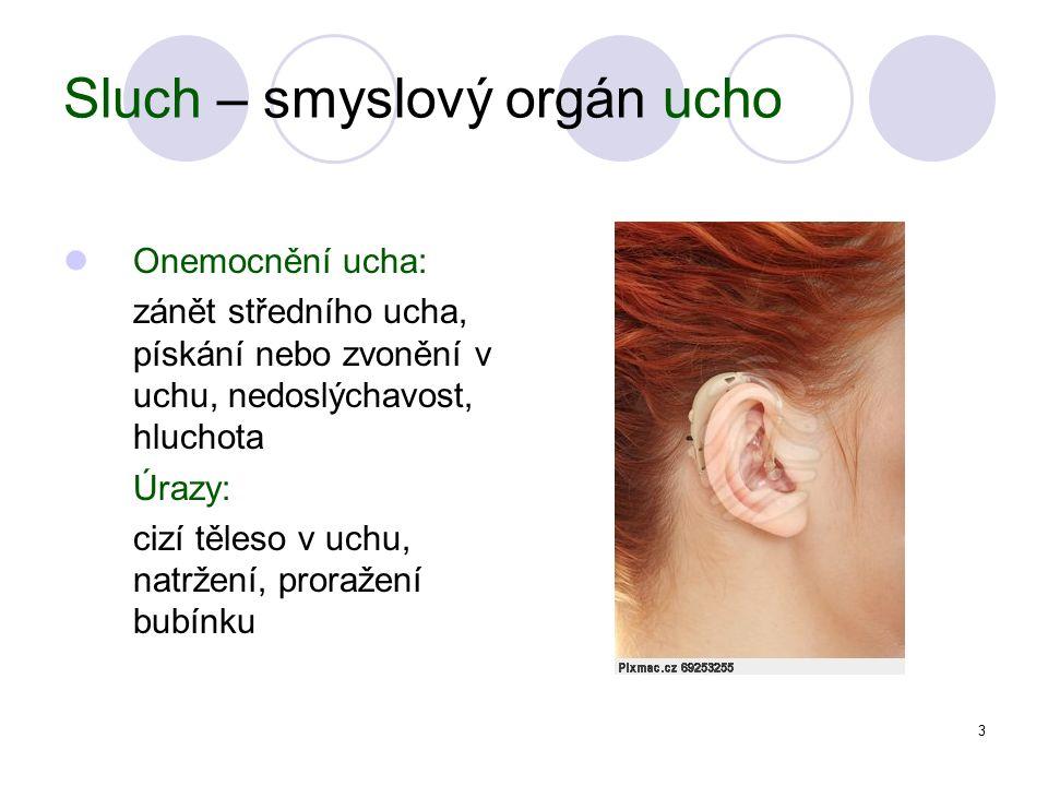 3 Sluch – smyslový orgán ucho Onemocnění ucha: zánět středního ucha, pískání nebo zvonění v uchu, nedoslýchavost, hluchota Úrazy: cizí těleso v uchu, natržení, proražení bubínku
