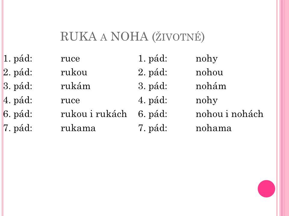 RUKA A NOHA ( ŽIVOTNÉ ) 1. pád:ruce 2. pád:rukou 3.