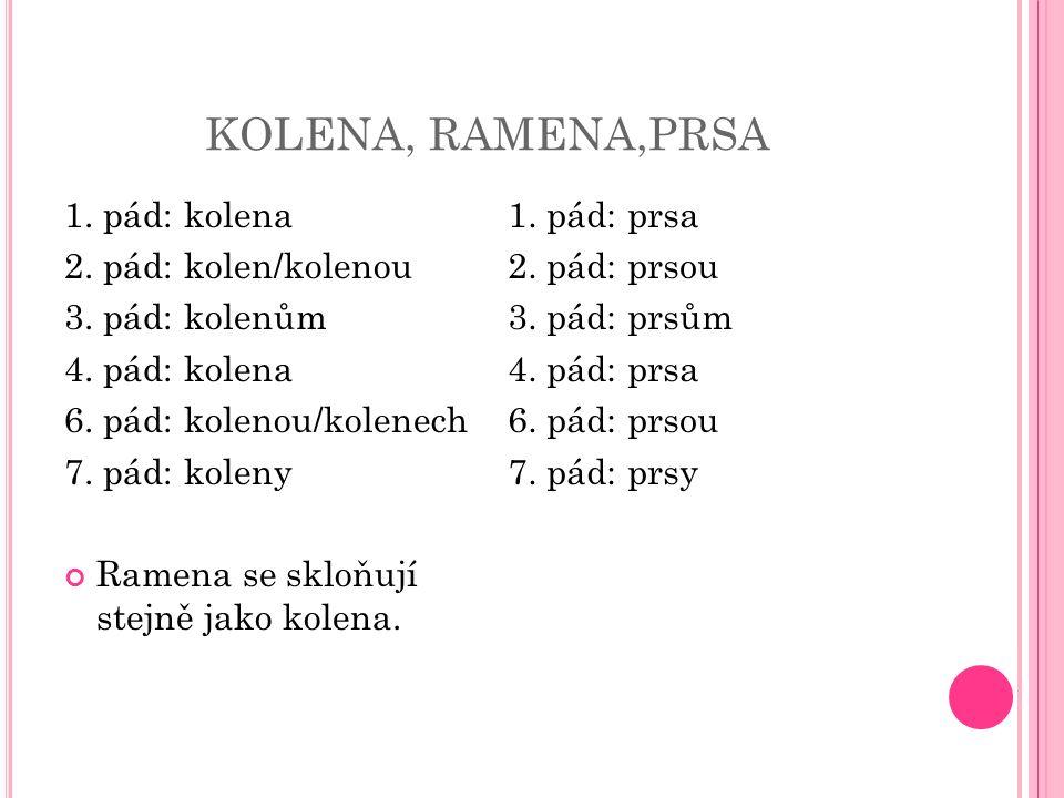 KOLENA, RAMENA,PRSA 1. pád: kolena 2. pád: kolen/kolenou 3.
