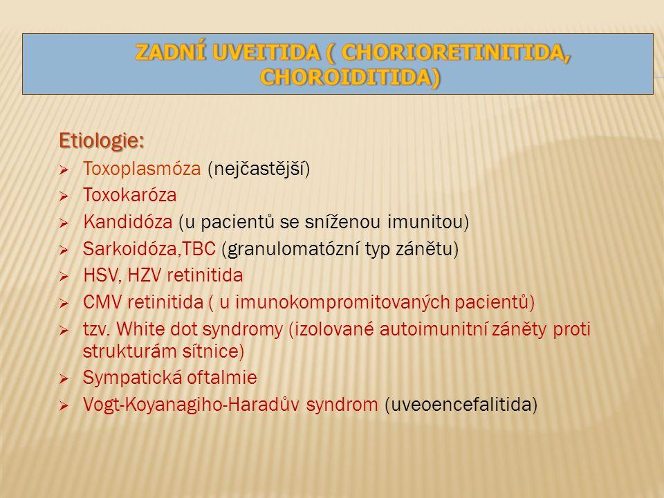 Etiologie:  Toxoplasmóza (nejčastější)  Toxokaróza  Kandidóza (u pacientů se sníženou imunitou)  Sarkoidóza,TBC (granulomatózní typ zánětu)  HSV, HZV retinitida  CMV retinitida ( u imunokompromitovaných pacientů)  tzv.