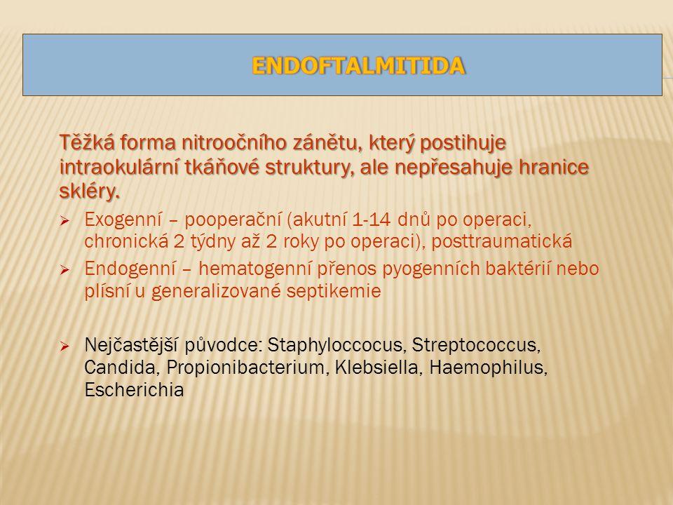 Těžká forma nitroočního zánětu, který postihuje intraokulární tkáňové struktury, ale nepřesahuje hranice skléry.