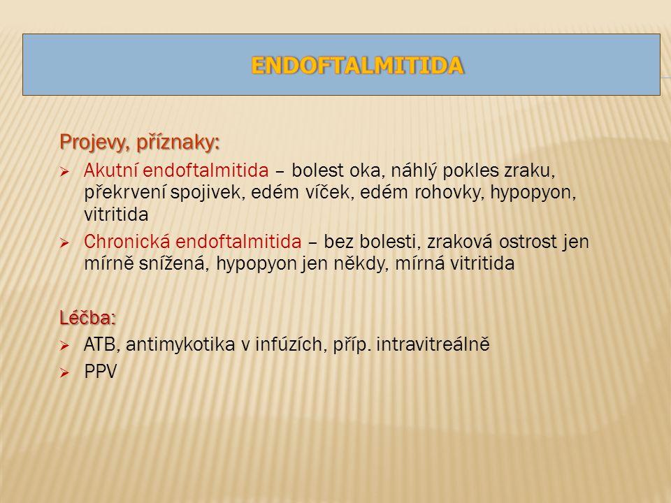 Projevy, příznaky:  Akutní endoftalmitida – bolest oka, náhlý pokles zraku, překrvení spojivek, edém víček, edém rohovky, hypopyon, vitritida  Chronická endoftalmitida – bez bolesti, zraková ostrost jen mírně snížená, hypopyon jen někdy, mírná vitritidaLéčba:  ATB, antimykotika v infúzích, příp.