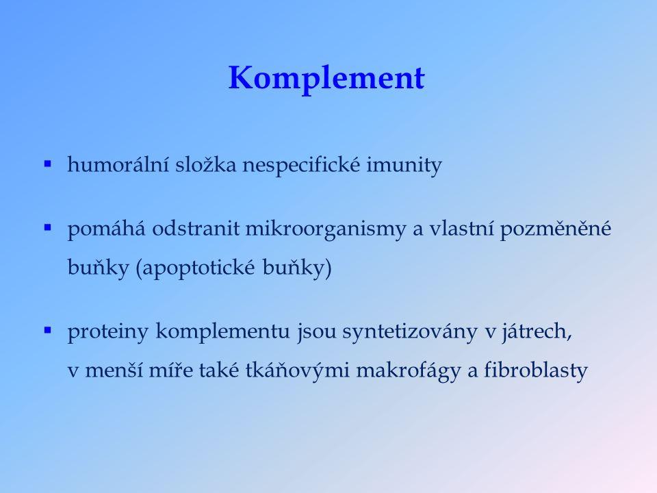 Komplement  humorální složka nespecifické imunity  pomáhá odstranit mikroorganismy a vlastní pozměněné buňky (apoptotické buňky)  proteiny komplementu jsou syntetizovány v játrech, v menší míře také tkáňovými makrofágy a fibroblasty