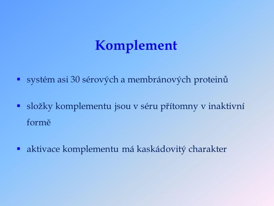 Složky komplementu  hlavní složky komplementu : C1-C9 (ústřední složka C3)  další složky komplementu : faktor B, faktor D, faktor P  regulační proteiny : C1-inhibitor, faktor I, faktor H, DAF, MCP, CR1, C4bp, inaktivátor anafylatoxinu, protein S, CD59 (protektin)