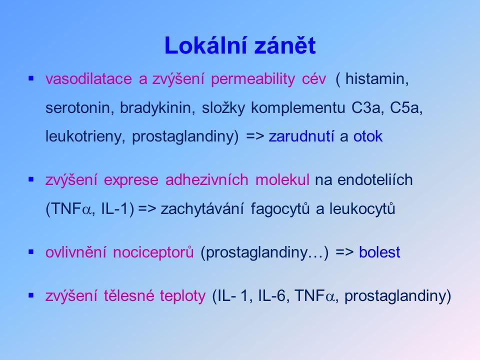Lokální zánět  vasodilatace a zvýšení permeability cév ( histamin, serotonin, bradykinin, složky komplementu C3a, C5a, leukotrieny, prostaglandiny) => zarudnutí a otok  zvýšení exprese adhezivních molekul na endoteliích (TNF , IL-1) => zachytávání fagocytů a leukocytů  ovlivnění nociceptorů (prostaglandiny…) => bolest  zvýšení tělesné teploty (IL- 1, IL-6, TNF , prostaglandiny)