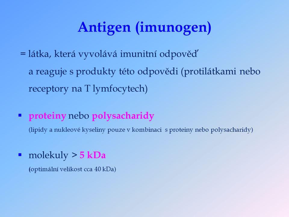 Antigen (imunogen) = látka, která vyvolává imunitní odpověď a reaguje s produkty této odpovědi (protilátkami nebo receptory na T lymfocytech)  proteiny nebo polysacharidy (lipidy a nukleové kyseliny pouze v kombinaci s proteiny nebo polysacharidy)  molekuly > 5 kDa ( optimální velikost cca 40 kDa)