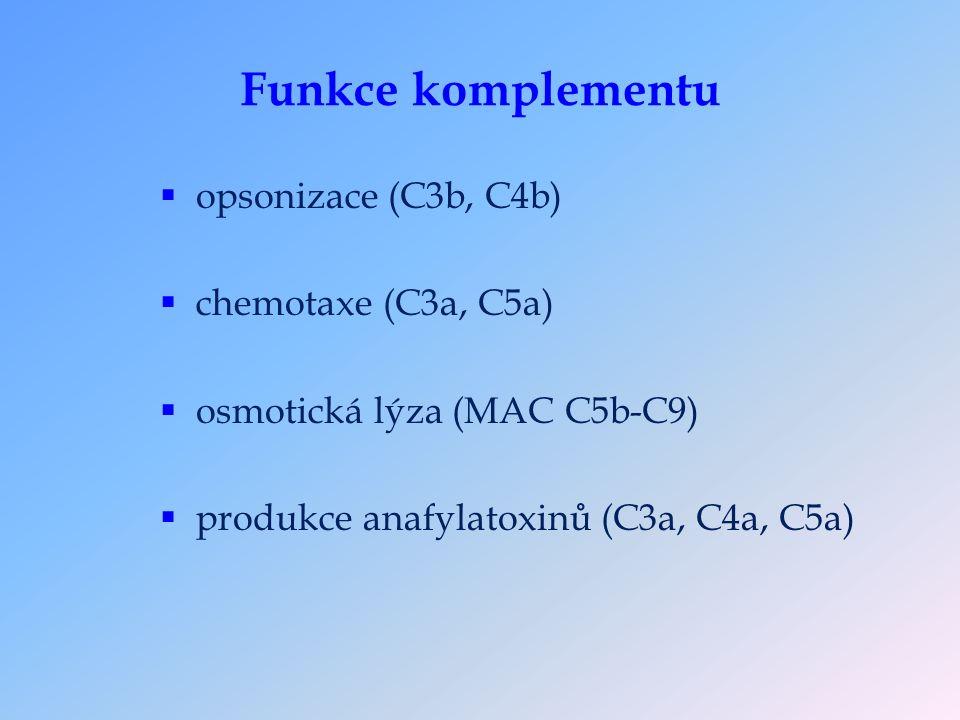Funkce komplementu  opsonizace (C3b, C4b)  chemotaxe (C3a, C5a)  osmotická lýza (MAC C5b-C9)  produkce anafylatoxinů (C3a, C4a, C5a)