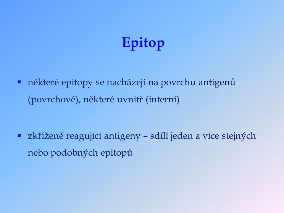  některé epitopy se nacházejí na povrchu antigenů (povrchové), některé uvnitř (interní)  zkříženě reagující antigeny – sdílí jeden a více stejných nebo podobných epitopů Epitop