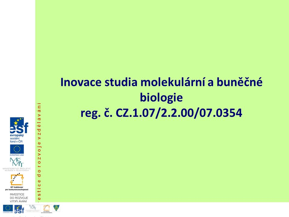 REAKCE BUŇKY NA VIROVOU INFEKCI Cytocidní produktivní infekce (lytická), při které proběhne kompletní reprodukce virů, buňka je však tak poškozená, že odumírá.