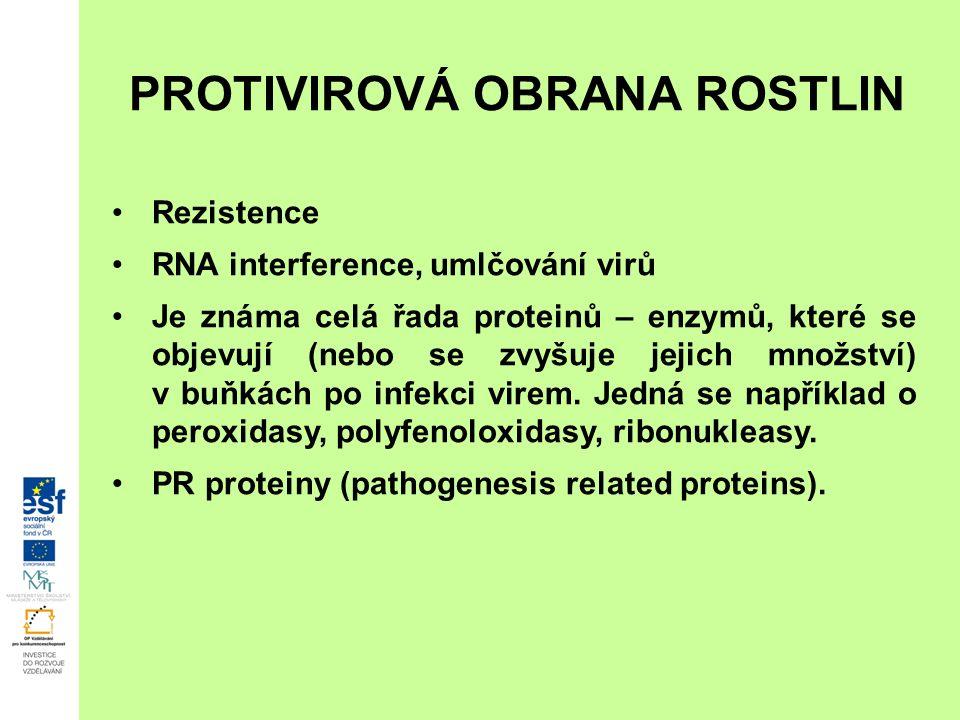 PROTIVIROVÁ OBRANA ROSTLIN Rezistence RNA interference, umlčování virů Je známa celá řada proteinů – enzymů, které se objevují (nebo se zvyšuje jejich množství) v buňkách po infekci virem.