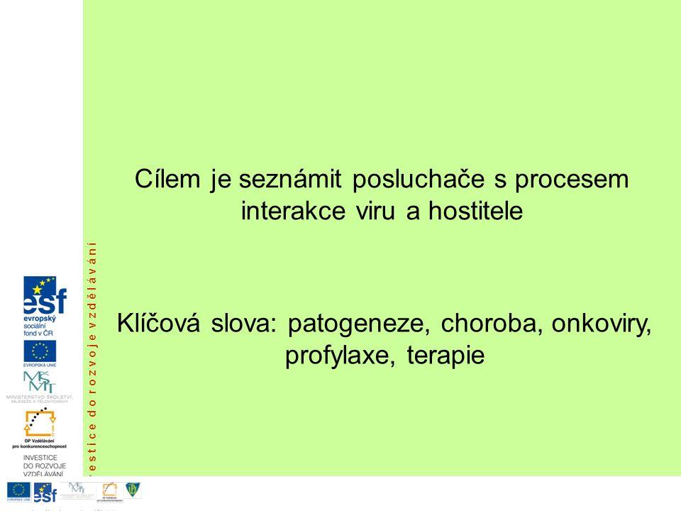 Virové onkogeny v pravém slova smyslu.Produkty onkogenů jsou nezbytné pro množení viru.