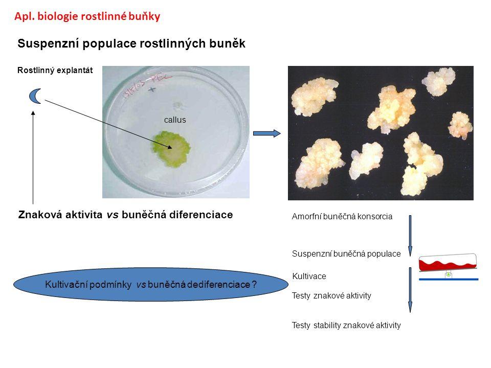 Suspenzní populace rostlinných buněk Rostlinný explantát callus Amorfní buněčná konsorcia Suspenzní buněčná populace Kultivace Testy znakové aktivity