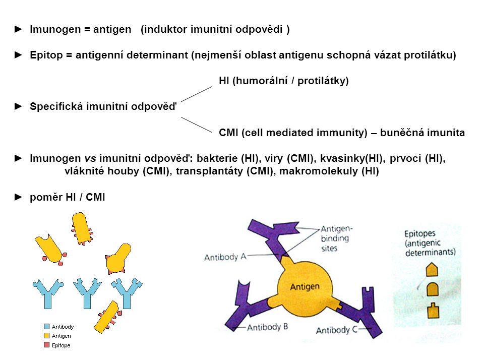 ► Imunogen = antigen (induktor imunitní odpovědi ) ► Epitop = antigenní determinant (nejmenší oblast antigenu schopná vázat protilátku) HI (humorální