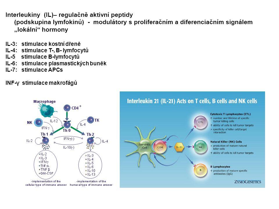 """Interleukiny (IL)– regulačně aktivní peptidy (podskupina lymfokinů) - modulátory s proliferačním a diferenciačním signálem """"lokální"""" hormony IL-3: sti"""