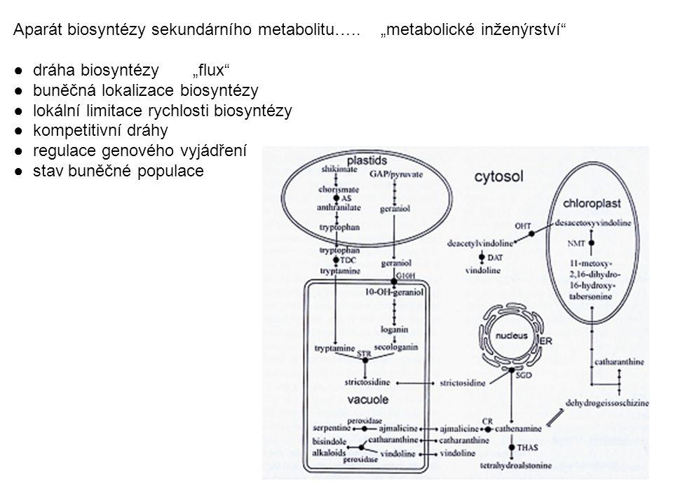 """Aparát biosyntézy sekundárního metabolitu….. """"metabolické inženýrství"""" ● dráha biosyntézy """"flux"""" ● buněčná lokalizace biosyntézy ● lokální limitace ry"""