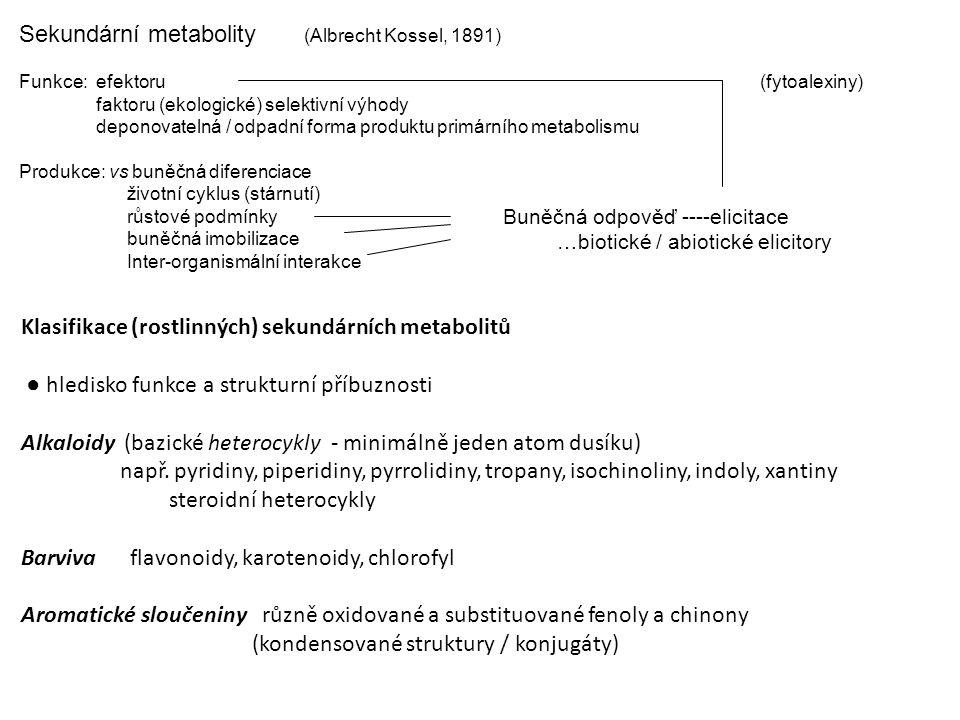 Sekundární metabolity (Albrecht Kossel, 1891) Funkce: efektoru faktoru (ekologické) selektivní výhody deponovatelná / odpadní forma produktu primárníh