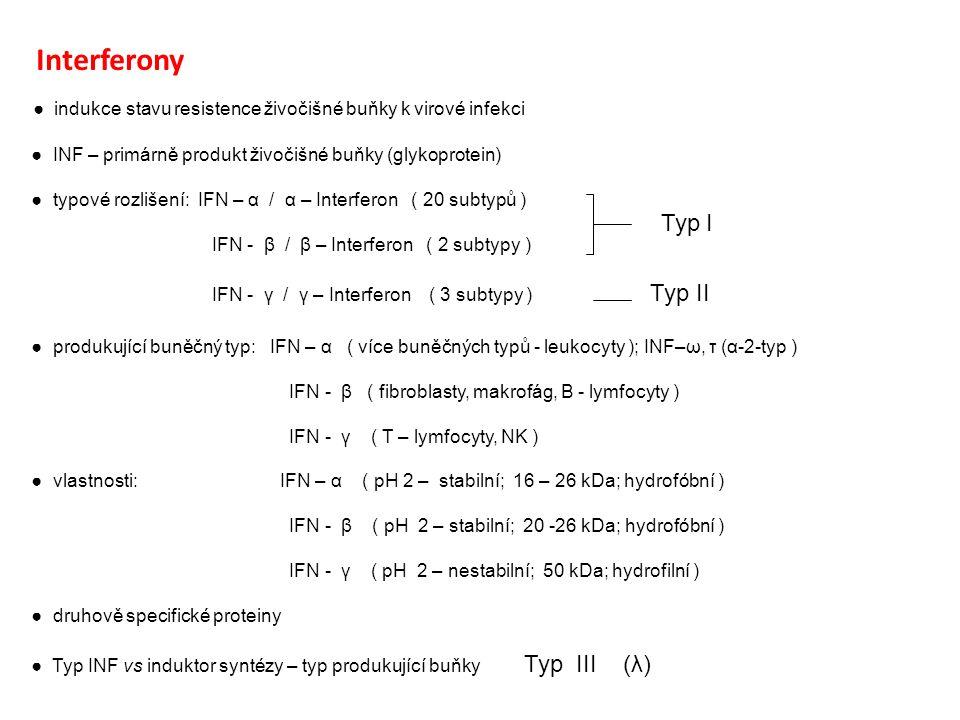 """● mimobuněčné uvolňování (cytokiny: interleukiny, interferony, chemokiny, růstové faktory, faktory nekrotizující nádory) ● nespecifický anti-virový efekt ● indukovaná syntéza (ds RNA, syntetické polynukleotidy, bakteriální taxony, chemikálie, polymerní částice…antigeny) ● INFs jsou syntetizovány jako """"navigované proteiny INF – α INF - β"""