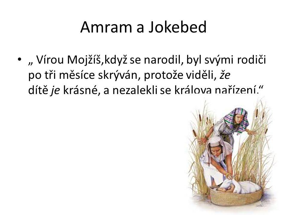 """Amram a Jokebed """" Vírou Mojžíš,když se narodil, byl svými rodiči po tři měsíce skrýván, protože viděli, že dítě je krásné, a nezalekli se králova naří"""