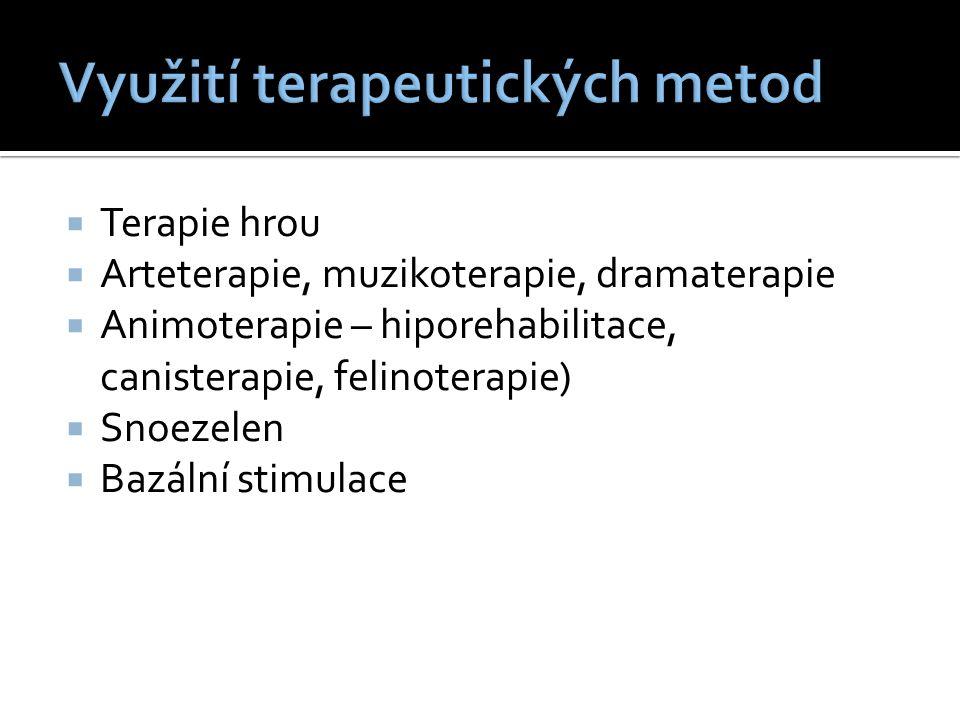  Terapie hrou  Arteterapie, muzikoterapie, dramaterapie  Animoterapie – hiporehabilitace, canisterapie, felinoterapie)  Snoezelen  Bazální stimulace